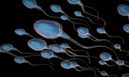 Tinh trùng dính bên ngoài liệu có thai không?